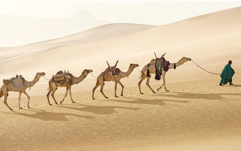 How the Sahara Was Born