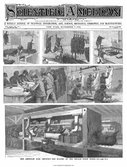 November 07, 1891