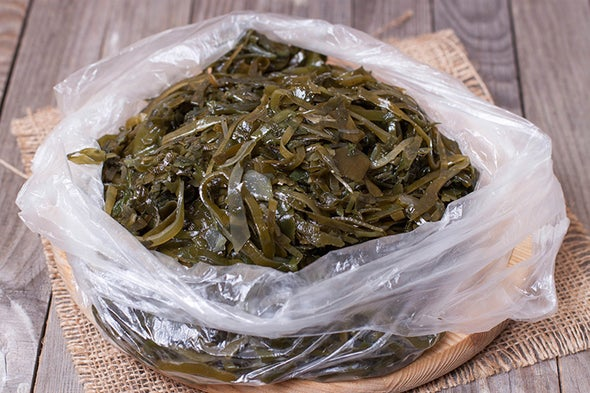 Just 1 Word for Maine's Future: Seaweed