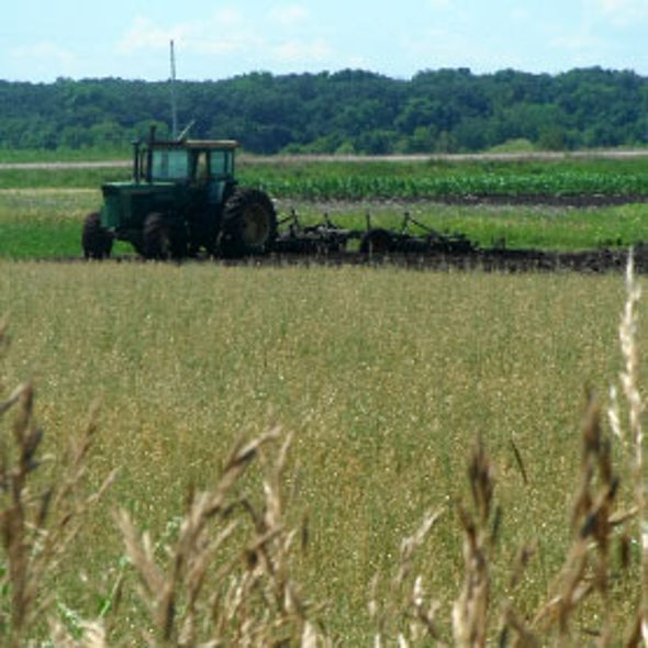 U.S. Food Production Shifts North, along with Infrastructure to Move It