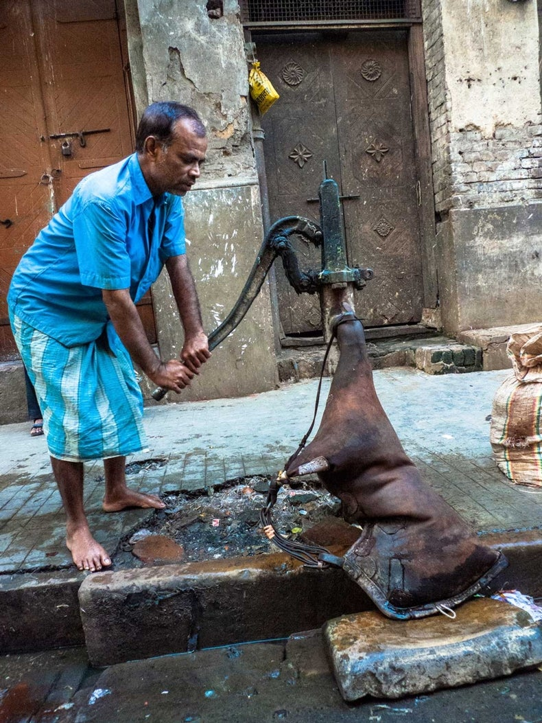 Arsenic Contaminates India's Drinking Water [Video]
