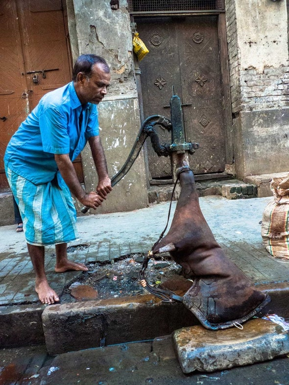 Arsenic Contaminates India's Drinking Water [Video]