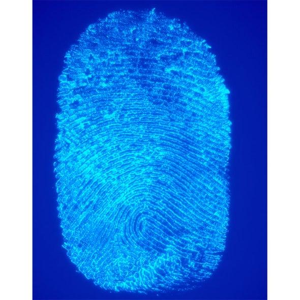 CSI: Cyber-Attack Scene Investigation--a Malware Whodunit
