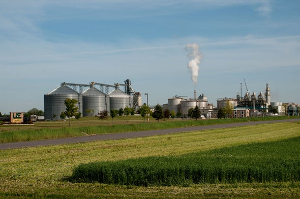 How a Government Program to Get Ethanol from Plants Failed