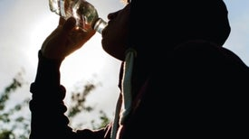 How Alcohol Ravages the Teen Brain