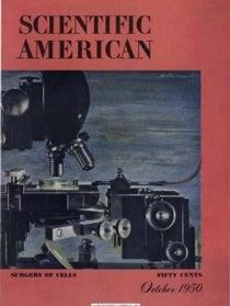 October 1950