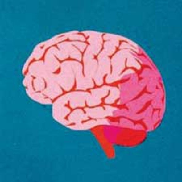 How the Brain Reveals Why We Buy