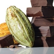 The Race to Save Chocolate