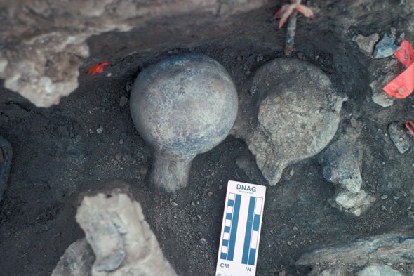 Ancient Bones Spark Fresh Debate over First Humans in the Americas