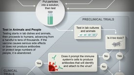 Coronavirus Vaccine Is 90 Percent Effective in Large Trial, Pfizer Says