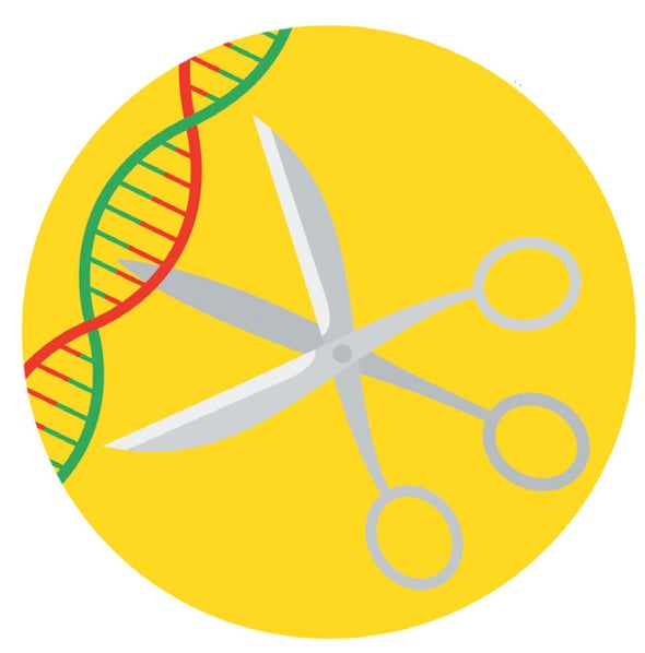 Newly Studied Proteins Expand CRISPR's Editing Range
