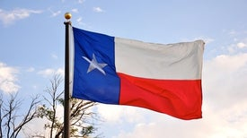 Scientists Dismayed as Texas Leans into Unproved Stem Cell Treatments