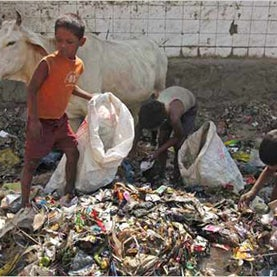 Invisible Environmentalists Help Clean Up India