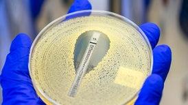 How do antibiotics kill bacterial cells but not human cells?