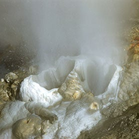 Did Life's First Cells Evolve in Geothermal Pools?