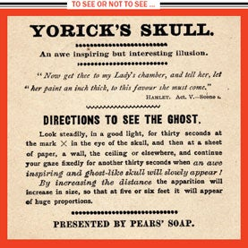 Yorick's Ghost and Other Afterimages