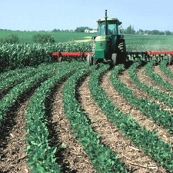 Modern Farming Helped Forestall Global Warming