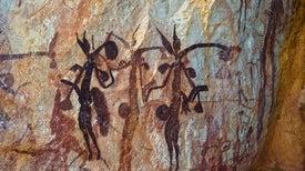 Wasp Nests Help Date Aboriginal Art
