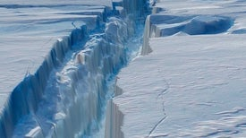 Wind-Propelled Waters Drove Antarctic Melting for Millennia