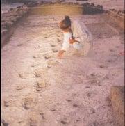 Footprints to Fill