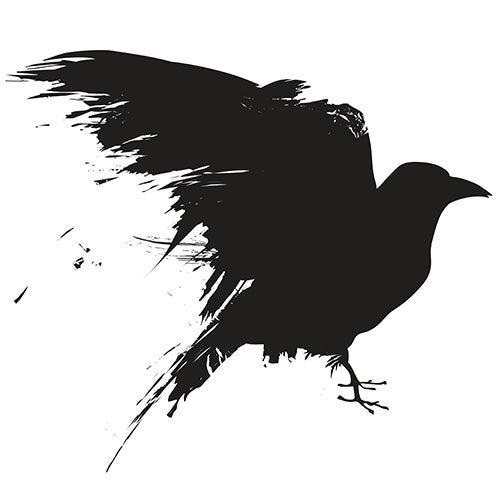 Crows Understand Analogies