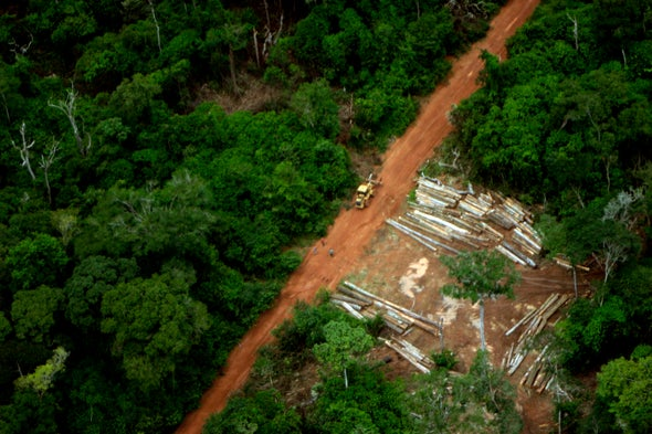2017 Was a Really Bad Year for Tropical Forests