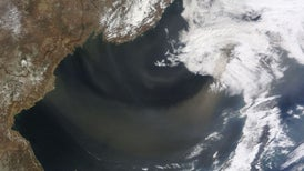 Mysterious Childhood Disease Spread by Dust Storms