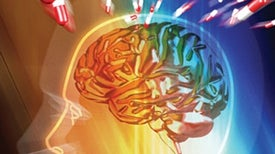 Do ADHD Drugs Take a Toll on the Brain?