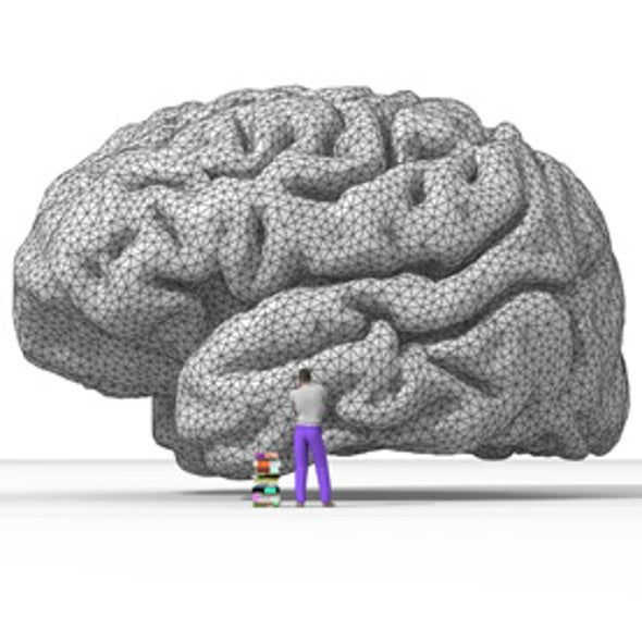 Cooperative Neural Networks Suggest How Intelligence Evolved