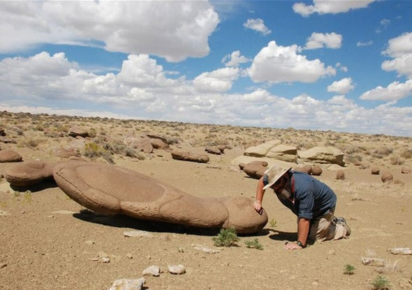 Predictive Map Leads Fossil Hunters to Pay Dirt [Slide Show]
