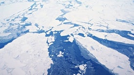 Sea Ice Hits Record Lows at Both Poles