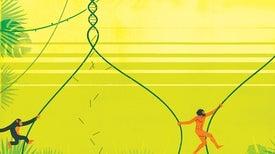Losing Key DNA Made Us Modern Humans