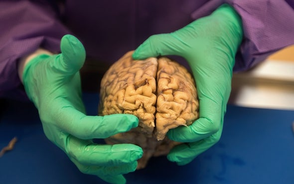 Striking Evidence Linking Football to Brain Disease Sparks Calls for More Research