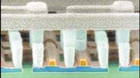 The First Nanochips