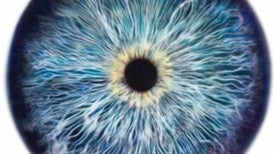 Minuscule Eye Motions Reveal Your True Thoughts