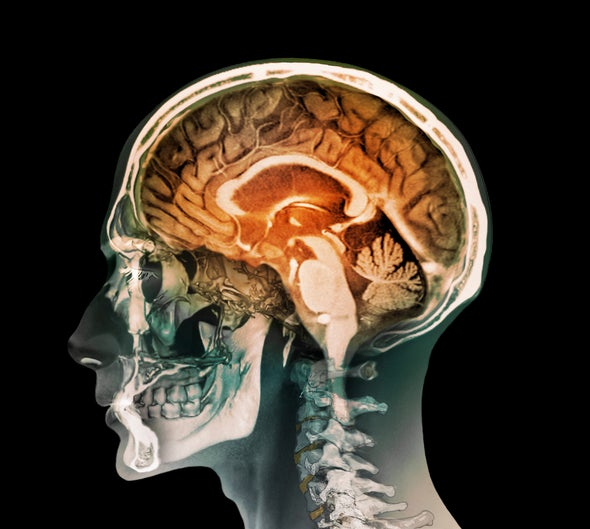 Beijing Launches Pioneering Brain Science Center
