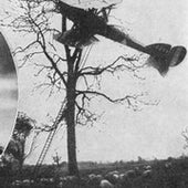 "Night flying was dangerous. This photo from 1917 shows a British machine after a collision with a tree. ""The pilot, fortunately, was uninjured."""