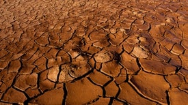 Global Warming Fired Up Heat Waves in 2013