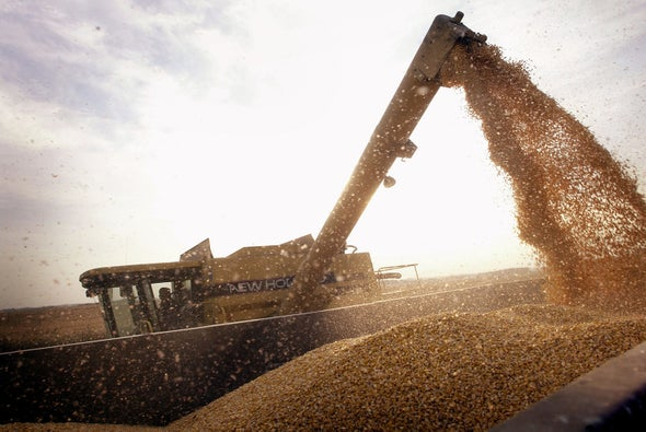 GM Crop Planting Declines for the First Time