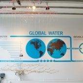 TELE-PRESENT WATER, by David Bowen.