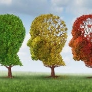Is Dementia Risk Falling?