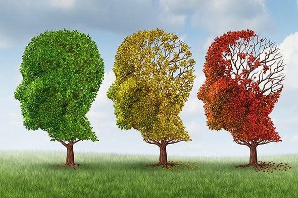 Is Dementia Risk Falling?