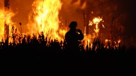 """Tennessee Wildfire Is """"Unlike Anything We've Ever Seen"""""""