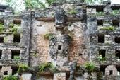 Laying Bare the Bones of Ancient Maya Society