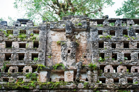 Laying Bare the Bones of Ancient Maya Society