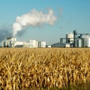 Intoxicated on Independence: Is Domestically Produced Ethanol Worth the Cost?