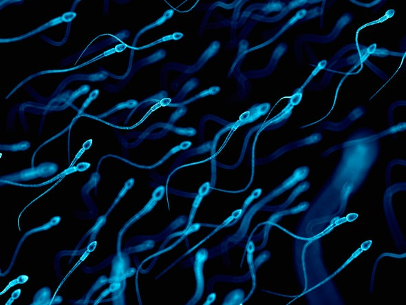 Consumer DNA Tests Negate Sperm-Bank-Donor Anonymity