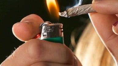 Casual Marijuana Smoking Not Harmful to Lungs