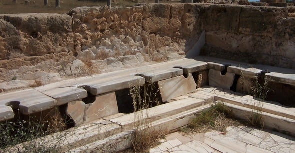 Roman Sanitation Didn't Stop Roaming Parasites