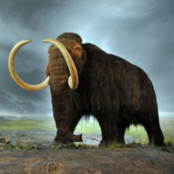 "Expiration Fate: Can ""De-Extinction"" Bring Back Lost Species?"